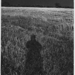 Self-portrait of Serena Wadham showing just her shadow in a field at Middle Georgia, Nancledra, Penzance.